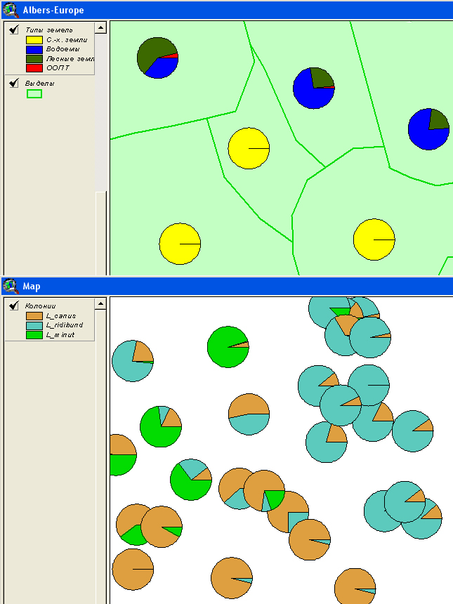 Рис. 170. Пример отображения данных с помощью опции «Chart – Локализованная диаграмма»: верхняя карта – структура землепользования, нижняя карта – колонии чаек
