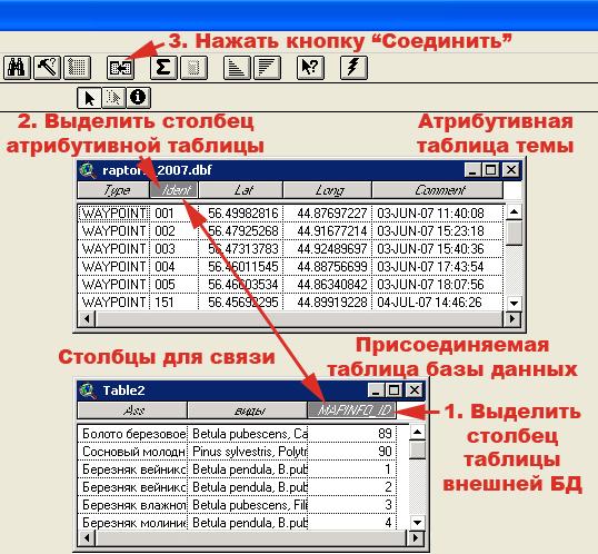Рис. 201. Пример связи атрибутивной таблицы и таблицы из внешней БД «Геоботанические описания» по столбцам с идентичными числовыми значениями «Ident» и «Mapinfo_ID» соответственно