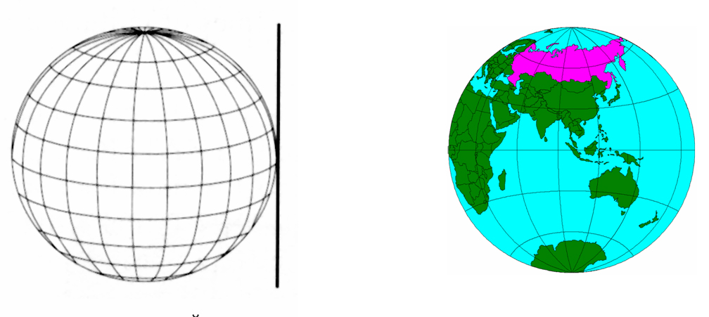Рис. 222. Поперечные проекции (экваториальный аспект)