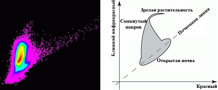 Рис. 297. График распределения красного (X) и ближнего инфракрасного (Y) каналов Landsat MSS (слева) и типичное распределение значений отражения для сельскохозяйственных культур в красном и ближнем инфракрасном каналах (справа)