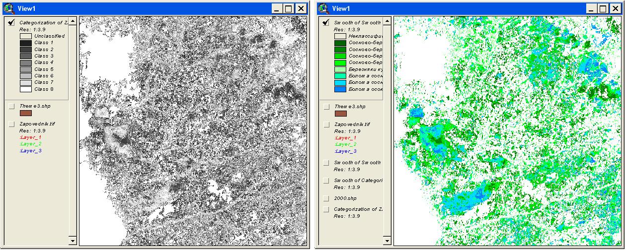 Рис. 317. Результат классификации изображения по ограничивающей теме: «сырые» данные классификации – слева и генерализованное изображение с заданной легендой – справа