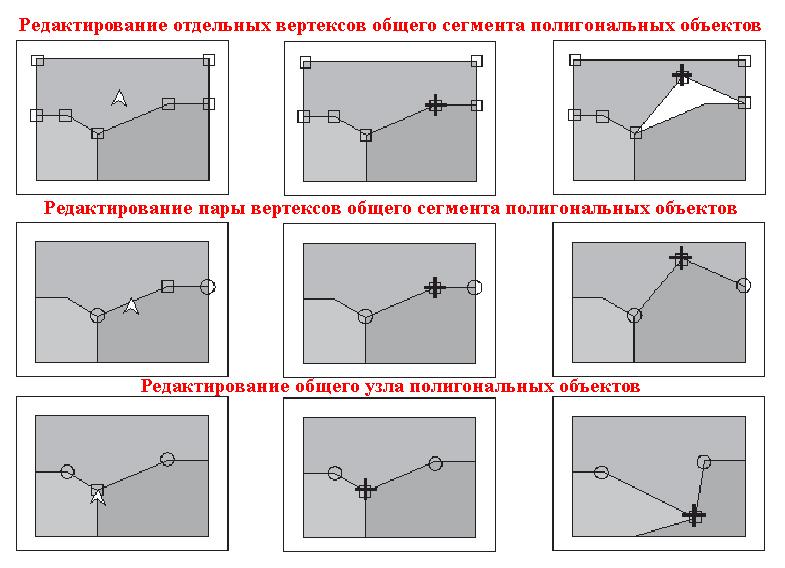 Рис. 350. Примеры редакции полигонов с общими сегментами