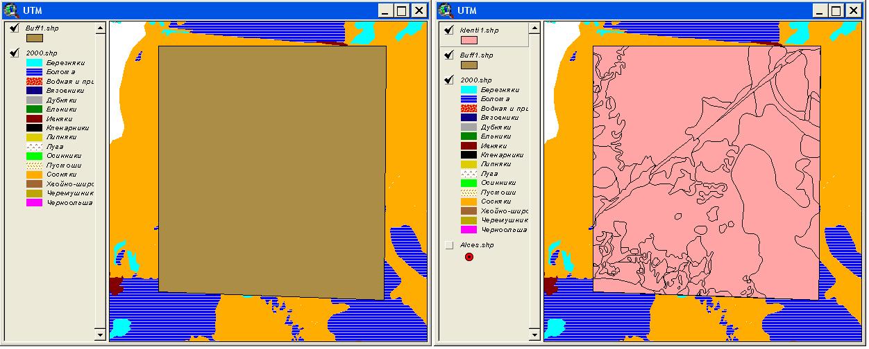 Рис. 370. Результат идентификации полигональной темы учетной площади по полигональной теме геоботанической карты с помощью расширения XTools – полигон учетной площади разрезан полигонами геоботанической карты, атрибуты полигонов геоботанической карты добавлены к атрибутам полигонов учетной площади