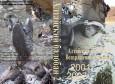 Алтайский балобан: возвращение в природу