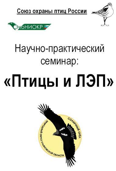 Семинар Птицы и ЛЭП в Ульяновске