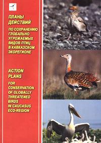 Планы действий по сохранению глобально угрожаемых видов птиц в Кавказском экорегионе