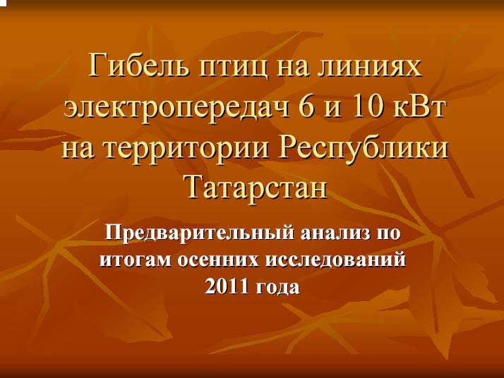 Птицы и ЛЭП в Татарии