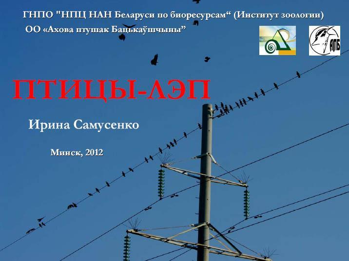 Птицы и ЛЭП в Беларуси