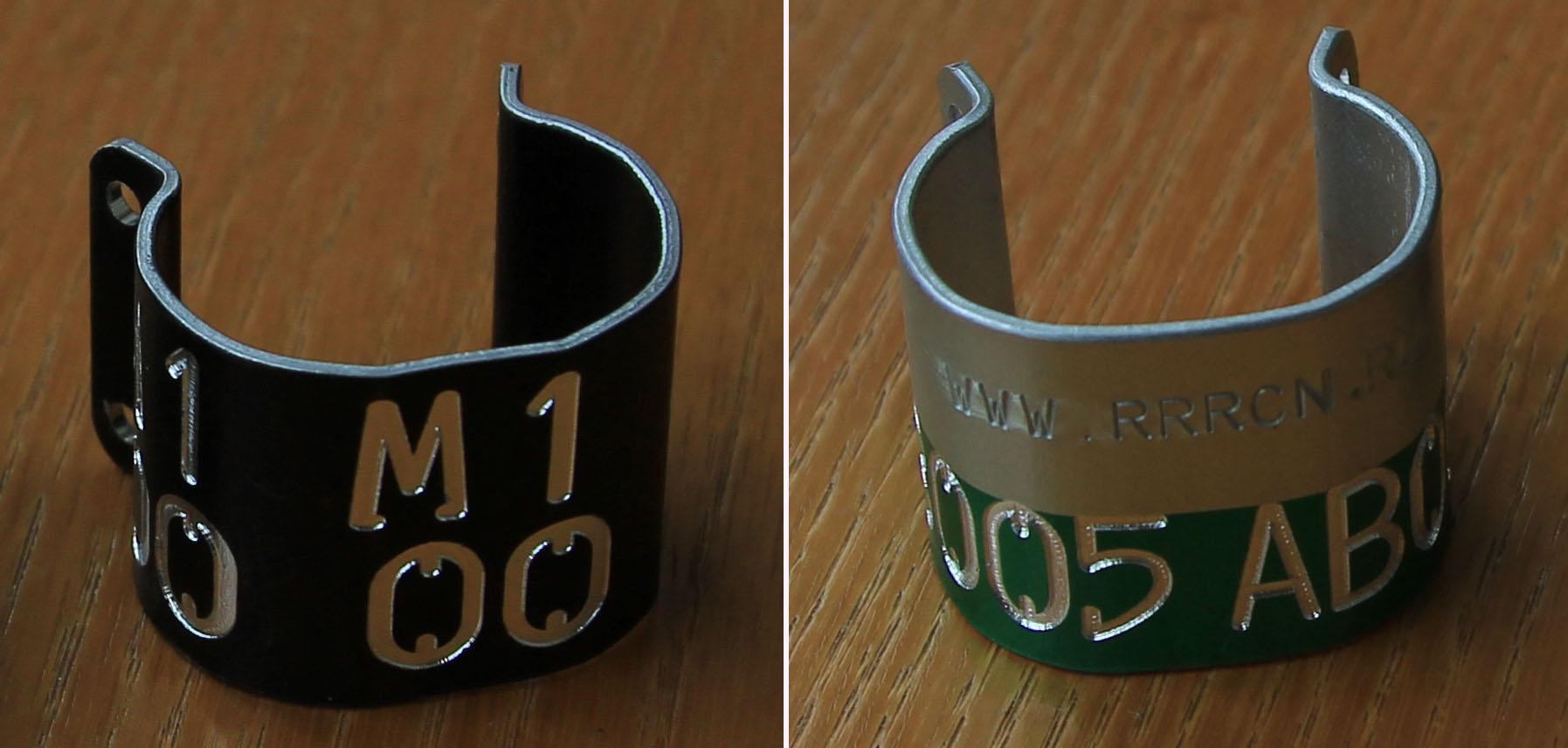 Кольца для мечения птенцов орлана-белохвоста в Поволжье в 2012 г.