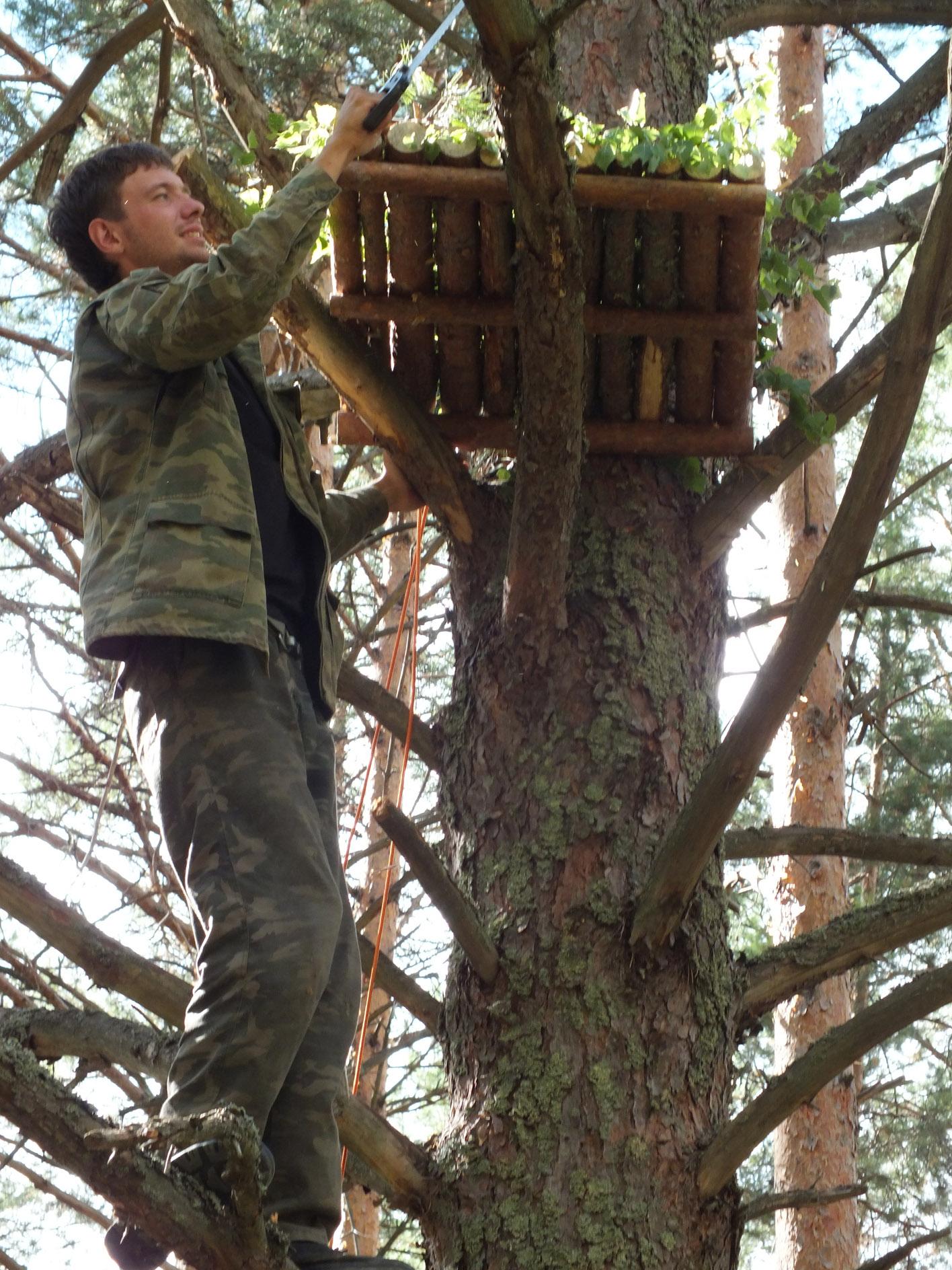 Последний штрих в установке платформы - спиливание веток, мешающих подлёту птицы. Фото Д. Денисова
