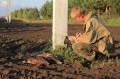 Ринур Бекмансуров составляет Акт на погибшего на ЛЭП орлана-белохвоста