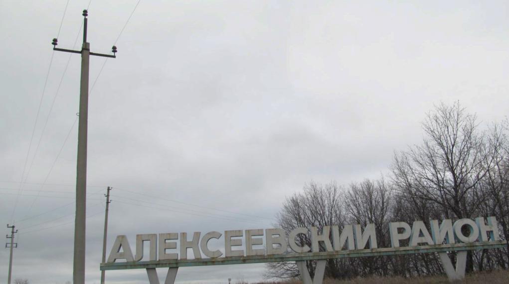 Оснащённая «ежами» линия ВЛ 10 кВ со штыревой изоляцией. Фото А. Салтыкова