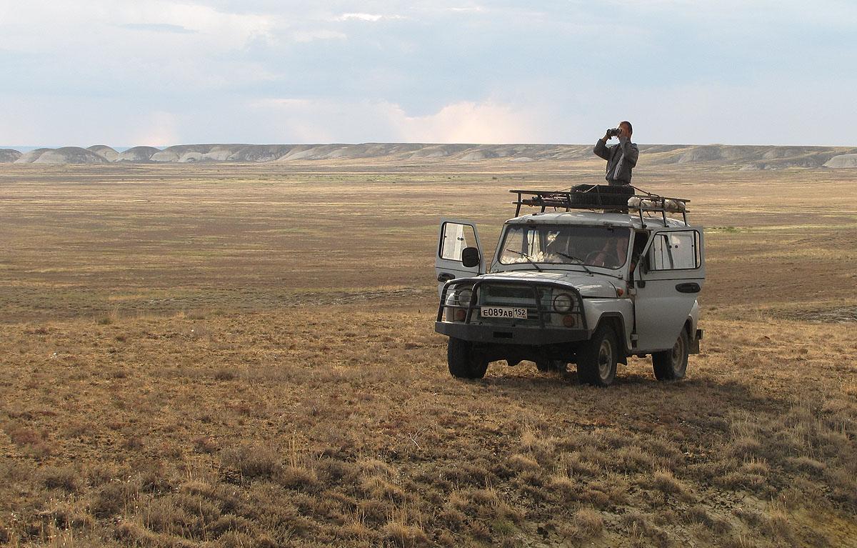 Учёт степного орла в ходе совместной российско-казахстанской экспедиции в Актюбинской области. Фото И. Карякина.