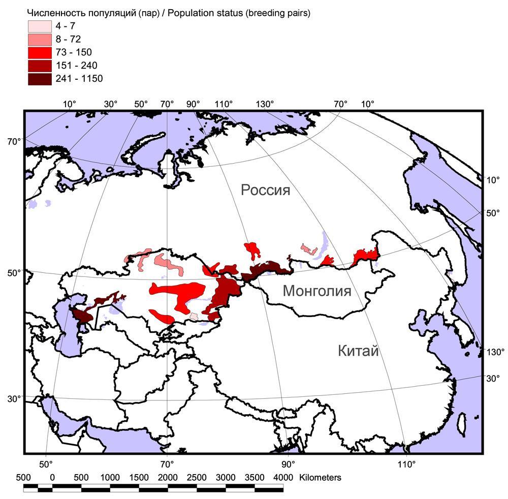 Распространение и численность балобана в России и Казахстане