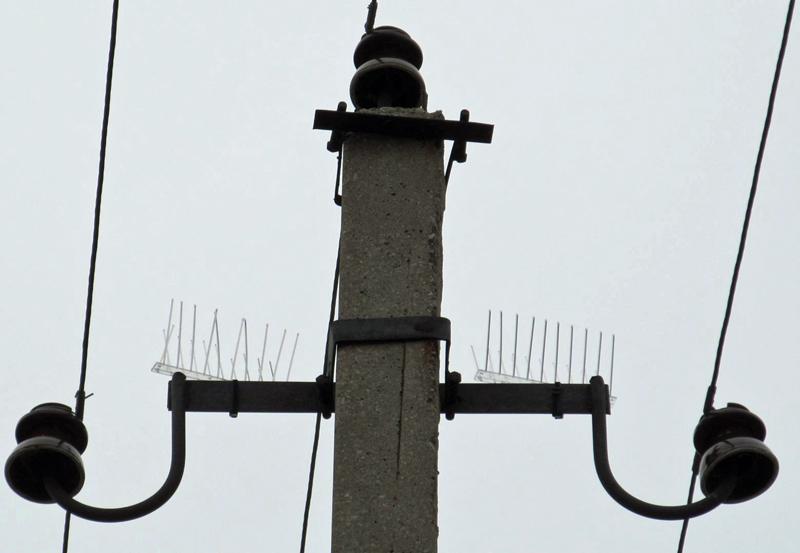 Птицеотпугивающие устройства «Ёж-стандарт» на ВЛ 6-10 кВ