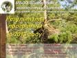 Программа «Изучение и охрана хищных птиц» Сибэкоцентра: результаты 2013 года
