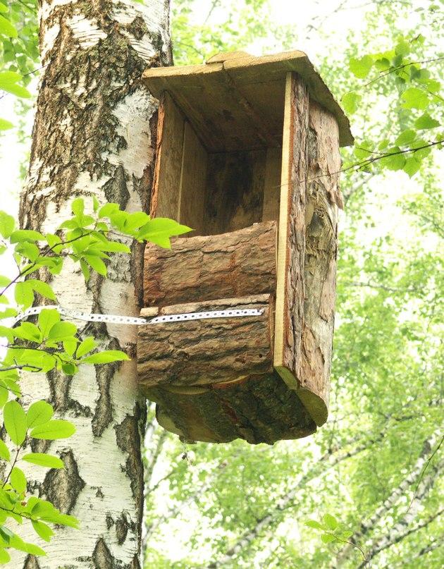 Дом для совы готов