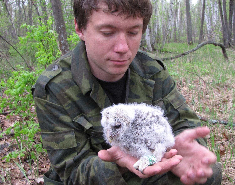 Алексей Левашкин с окольцованным птенцом длиннохвостой неясыти. Фото И. Карякина