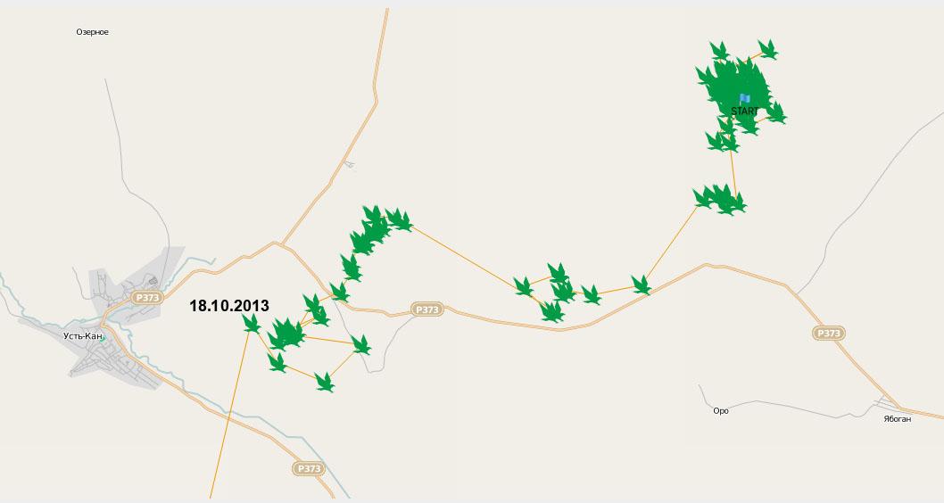 Схема перемещений Дуси за 20 августа - 17 октября 2013 г.