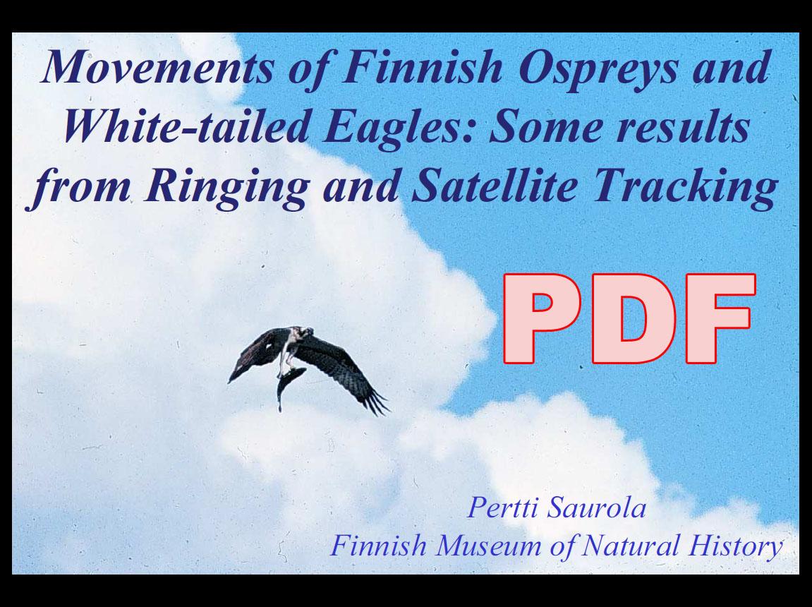Передвижение финских орланов-белохвостов и скоп: результаты кольцевания и спутникового отслеживания