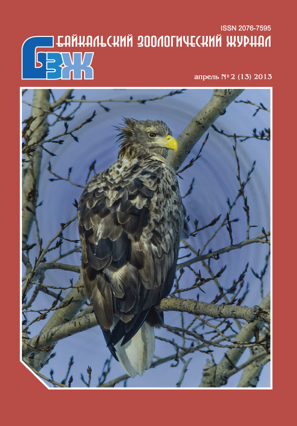 Байкальский зоологический журнал, декабрь № 2 (13) 2013