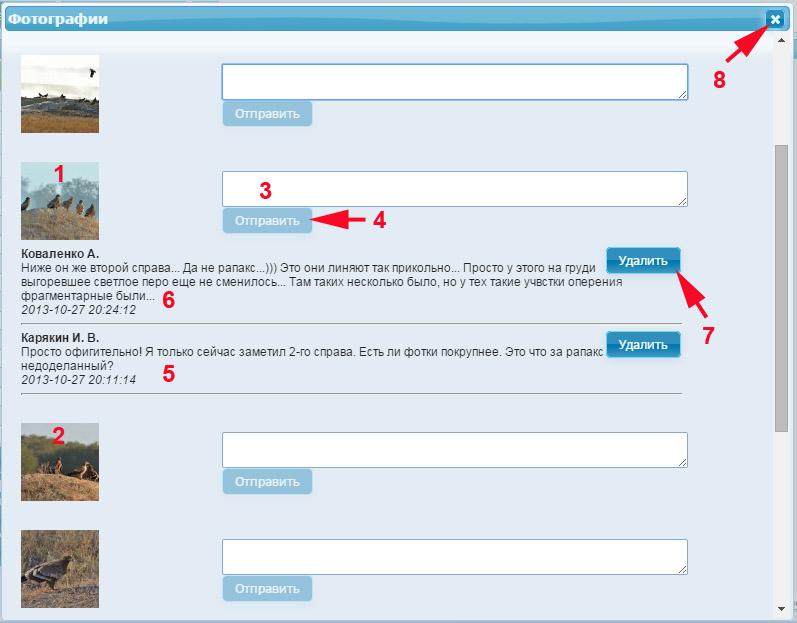 Страница комментирования фотографий для зарегистрированного пользователя