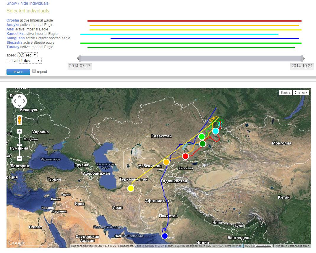 Схема перемещения орлов к местам зимовок в 2014 г.