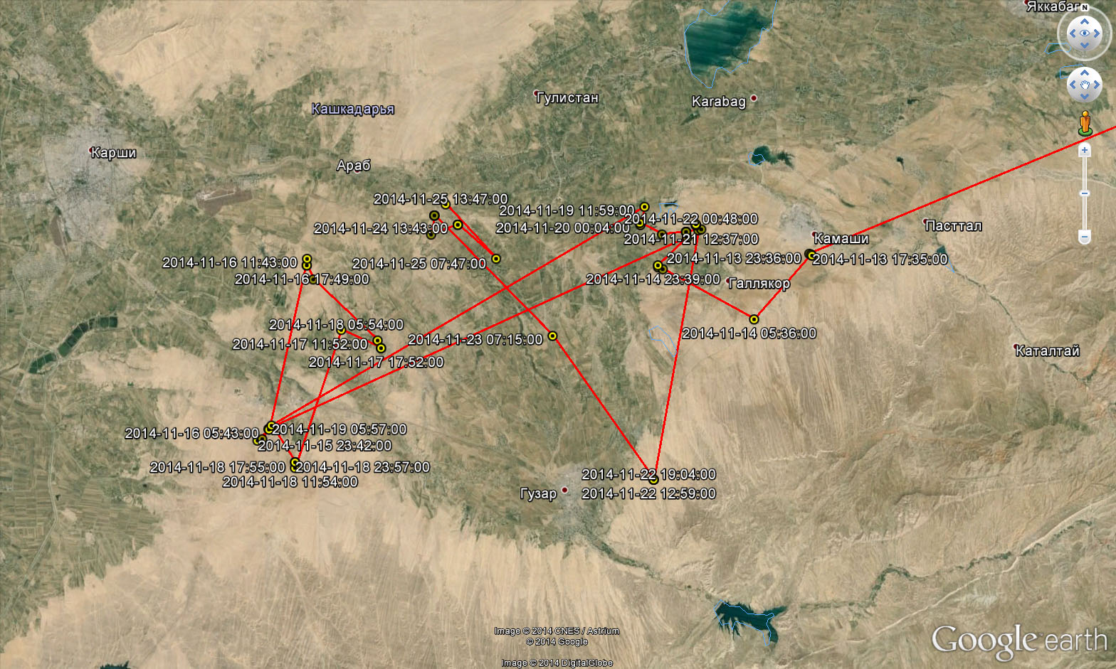 Перемещения Каночки с 12 по 25 ноября 2014 г. Кашкадарья, Узбекистан