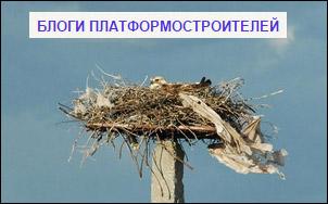 Program's blog for attract raptors for breeding in nesting platforms