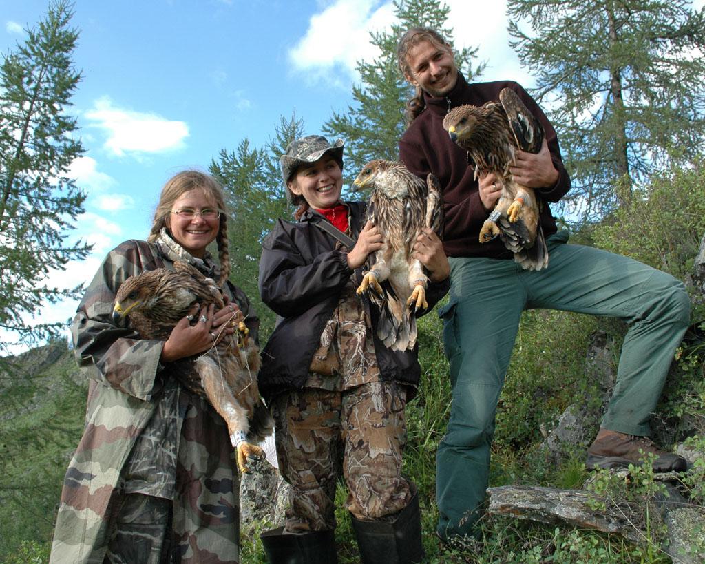 Участники экспедиции с помеченными орлами-могильниками. Фото И. Карякина