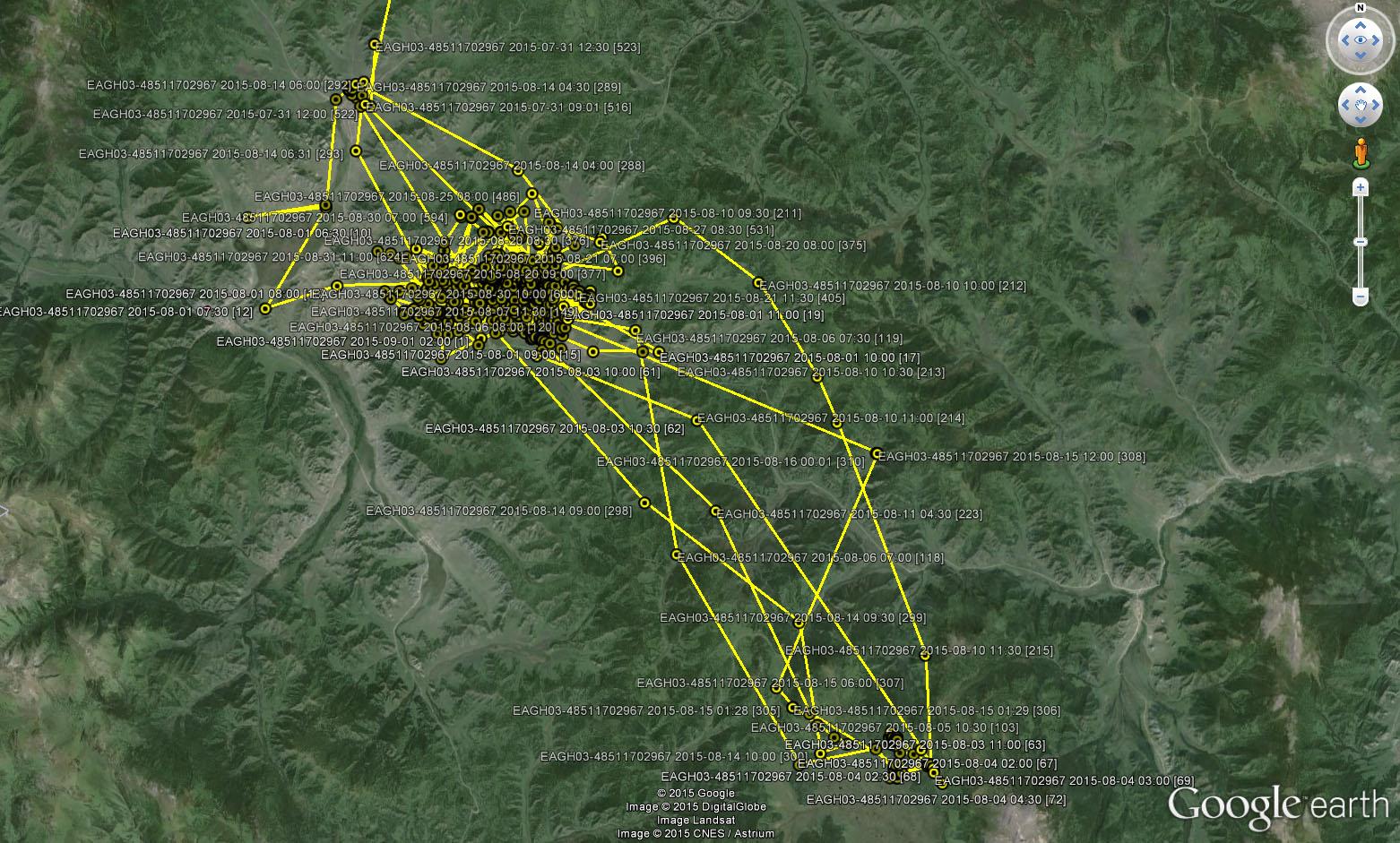 Перемещения Ороши в Усть-Канской котловине с 31 июля по 31 августа 2015 г.