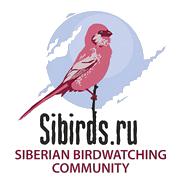 Workshop on development of birdwatching in Siberia