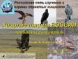 Хищные птицы России - проблемы выживания