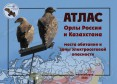 Орлы России и Казахстана: места обитания и зоны электросетевой опасности