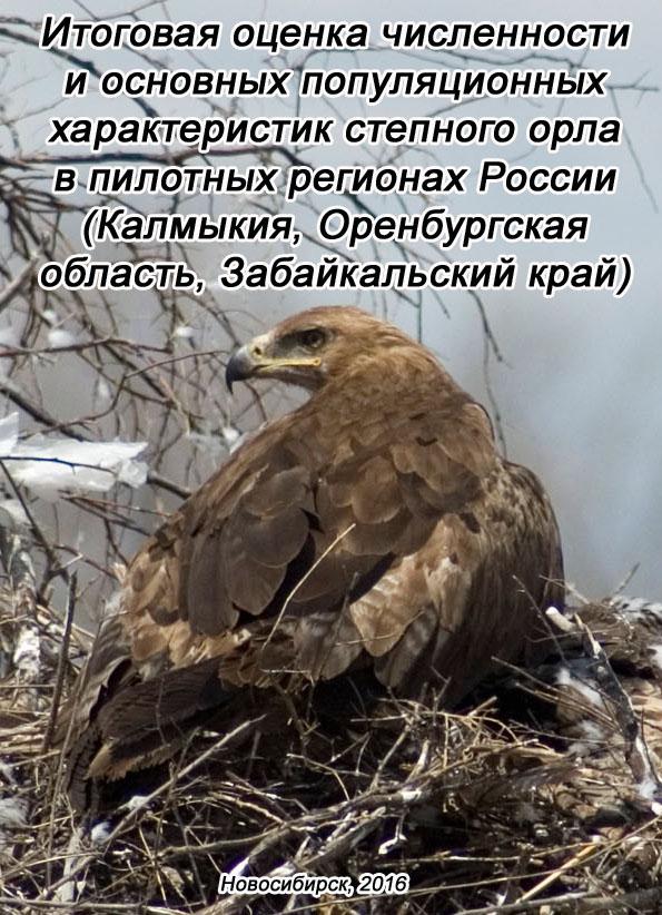 Итоговая оценка численности и основных популяционных характеристик степного орла в пилотных регионах России (Калмыкия, Оренбургская область, Забайкальский край)