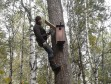 Алексей Левашкин устанавливает гнездовой ящик для мохноногого сыча. Фото И. Карякина