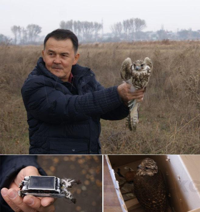 Выпуск Акемки в Киргизии. Фото ИА «24.kg» URL: http://24.kg/reportazhi/39212/