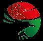 Международная конференция по охране птиц в Венгрии