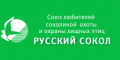 Русский сокол