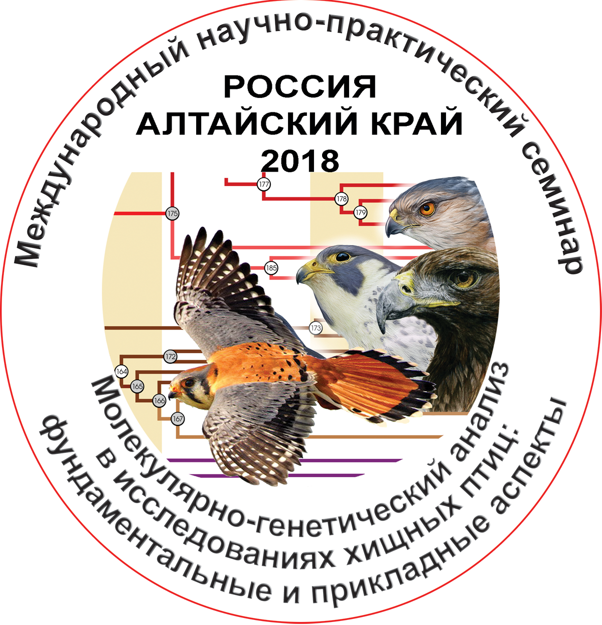 Molecular genetic analysis in research of raptors: fundamental and applied aspects